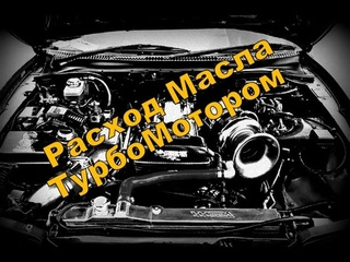 Skoda: Расход МаслаТурбомотором (2020)