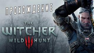Прохождения игры Ведьмак 3 Дикая Охота(The Witcher 3: Wild Hunt)