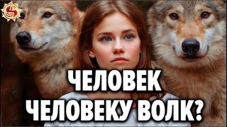 Волчьи законы, которые нам стоит перенять ! 🐺 Тайны волчьей стаи