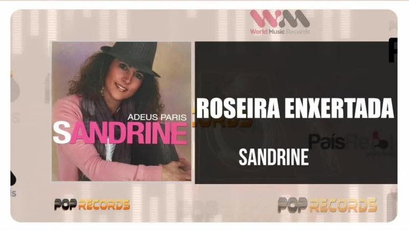 Sandrine Roseira Enxertada
