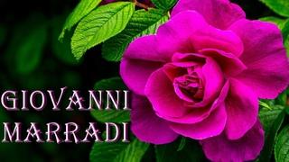 ♫ GIOVANNI MARRADI Лучшее ♫ The Best Of GIOVANNI MARRADI ♫  (Музыка Для Души)  !!!