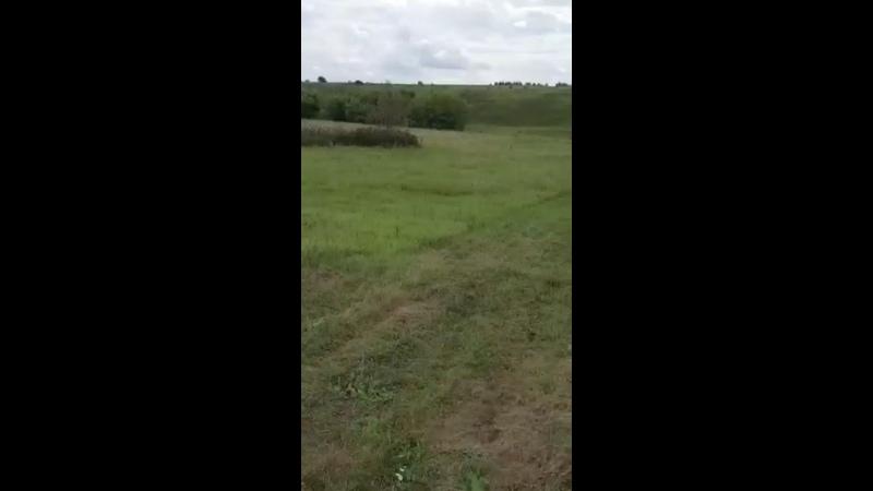 Видео от school 1544