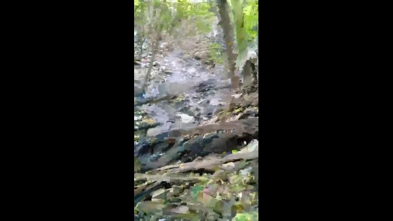 Видео от Наш Город Новости Тюмени