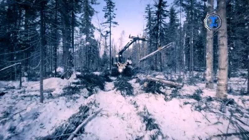 Сибирская рулетка На пределе