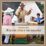 Экскурсия «Жизнь пчел на пасеке»