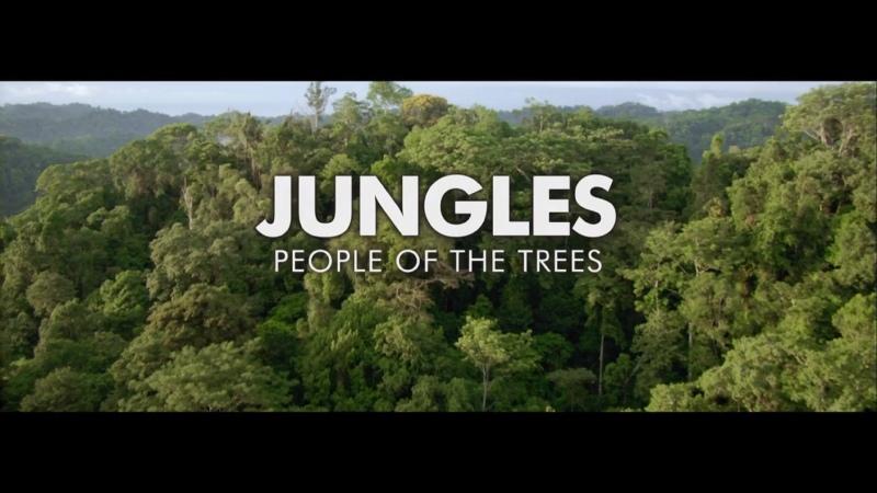 BBC Планета людей Часть 4 Джунгли Обитатели деревьев Human Planet Jungles People of the Trees HD