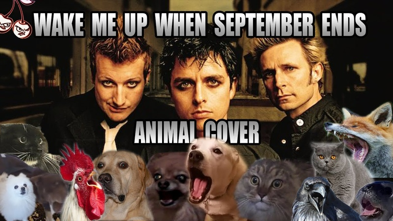 Green Day Wake Me Up When September Ends Animal Cover