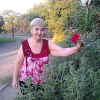 Фотография Ларисы Войнаровской-Жуковой ВКонтакте